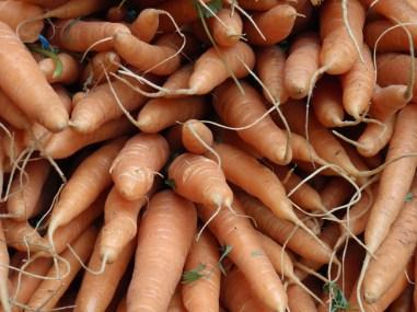 Carrots at Borough Market