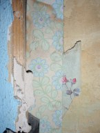 layers of old wallpaper
