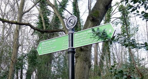 Capital Ring walk sign