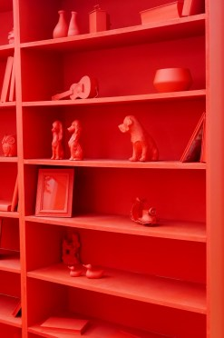 Red Shelves Ideal home Show 2016