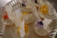 Tonka bean and vanilla pannacotta w/spice roast apricot coulis, edible flowers and black pepper meringue shards