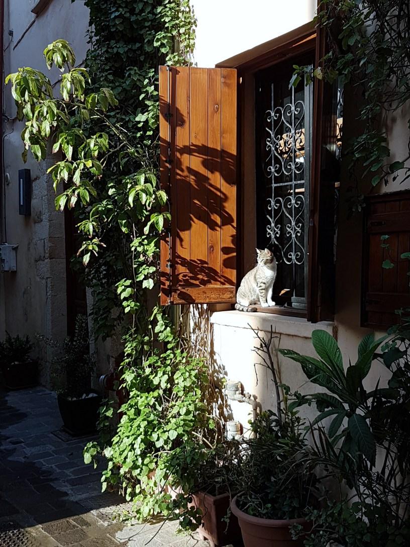 Cat in Kastelli window