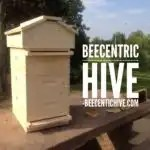 Beecentic Hive is a combination of Langstroth and Warre hive designs.
