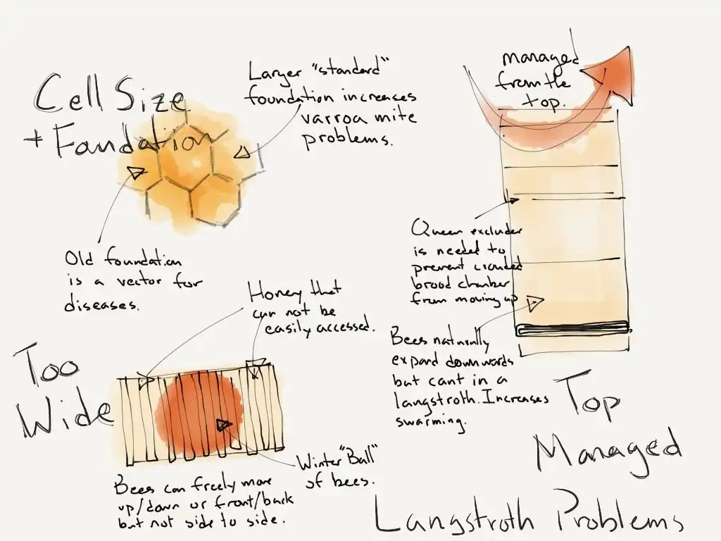 How to make a moisture quilt for a langstroth hive honey - Common Design Flaws Of Langstroth Hives