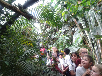 The Living Rainforest - April 2016