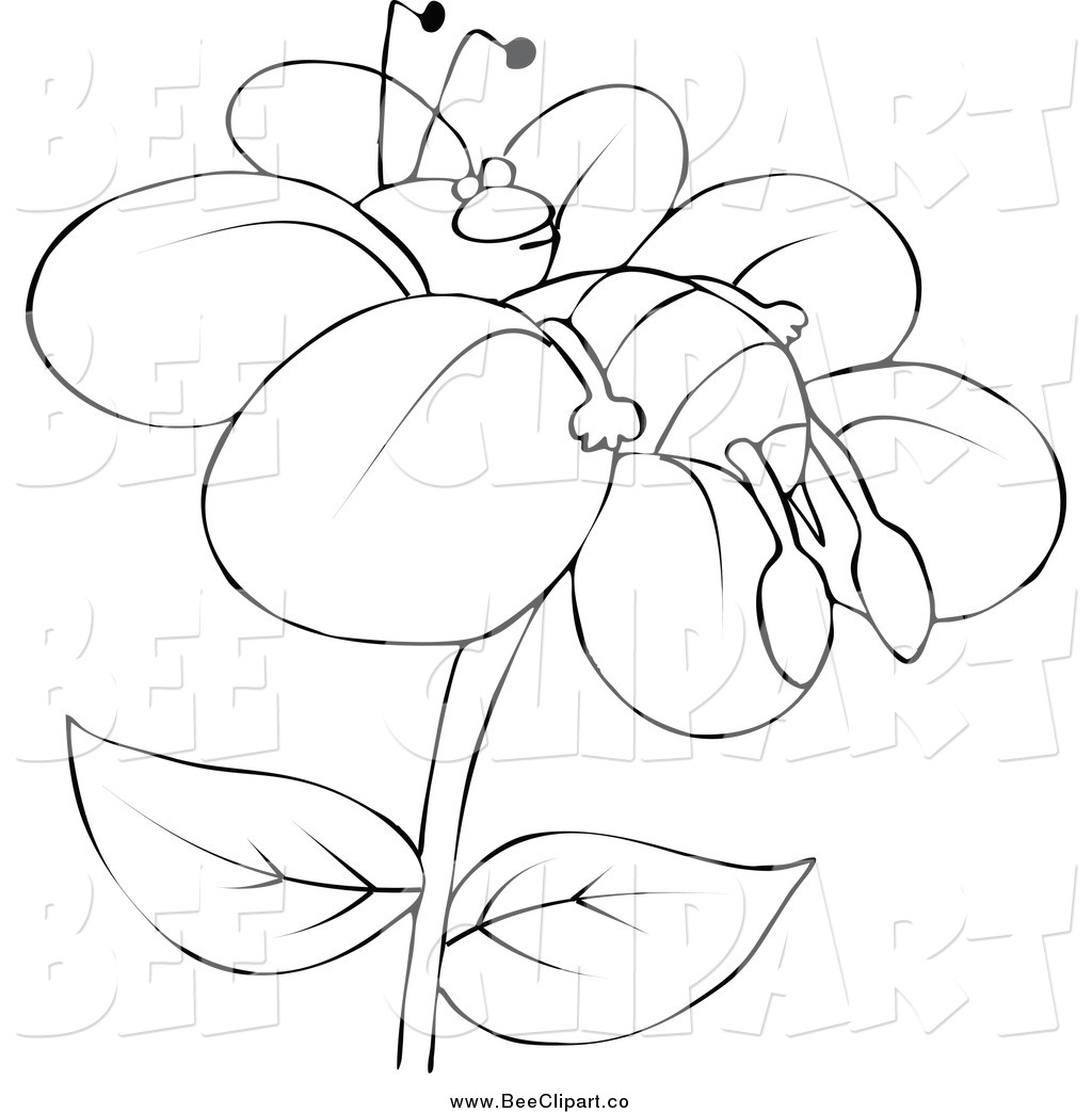 Royalty Free Stock Bee Designs Of Outlines
