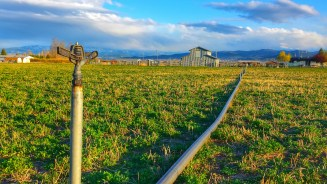 Montana Irrigation Pipe Impact Sprinkler