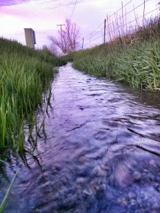 Montana Irrigation Ditch Water Flowing