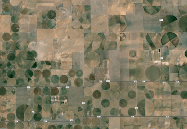 crop fields coronado feeders jbs five rivers dalhart texas