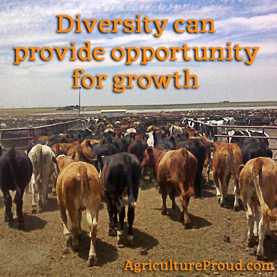 Perspectives Divide and Offer Opportunity for Growth