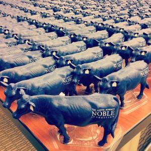 The Blue Cows are coming! #bluecows #cowarmy #bluecowsarecoming @noblefoundatio