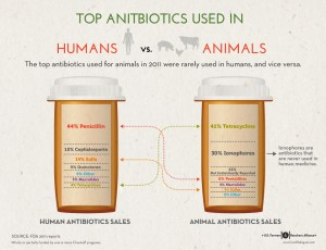 classes of antibiotics use in humans livestock