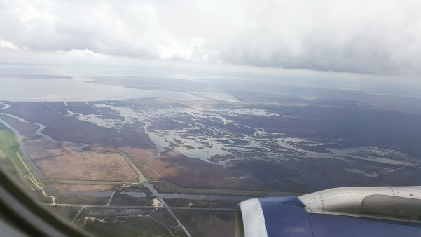 New Orleans from the plane