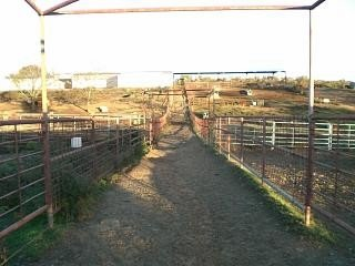 accident prevention farm ranch agriculture livestock
