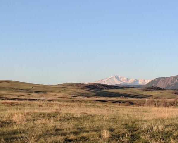 Greenland Trail 50k Pikes Peak