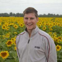 BeeHappy Imker Felix Mrowka, der Glückliche Imker in Amerika Sonnenblumenbestäubung