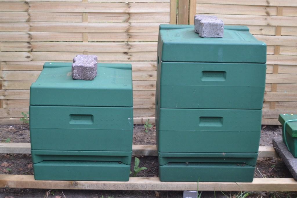 Zwei Bienenvölker stehen auf einem Stand