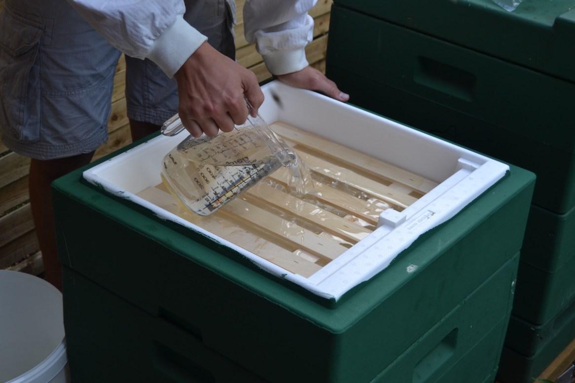 Ein Imker füllt Zuckersirup in eine Segeberger Futterzarge