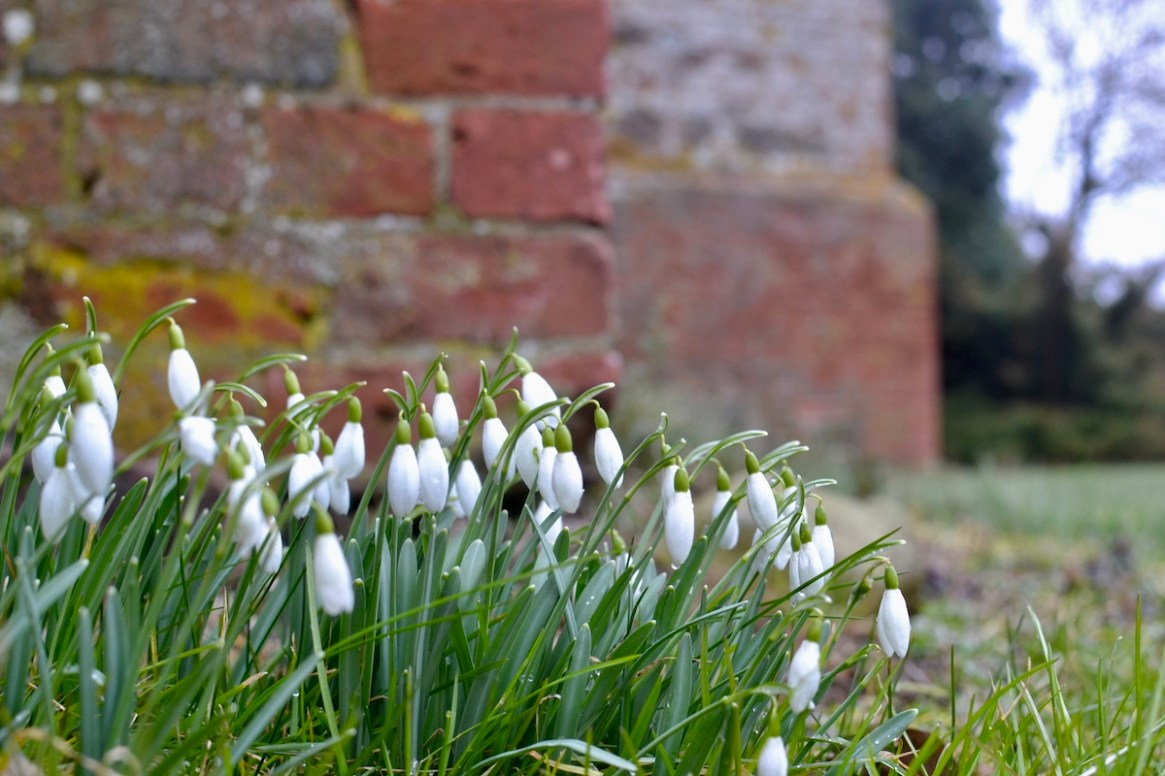 Interesse an der Natur erwacht im Frühling