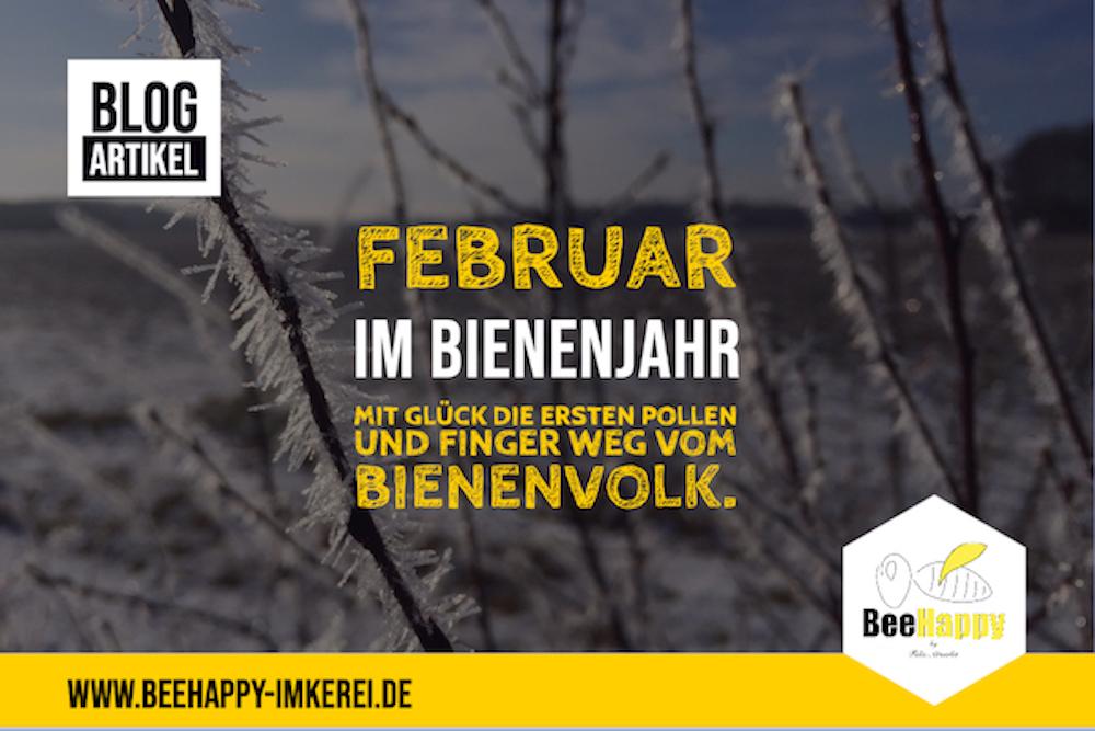 Februar Bienenjahr