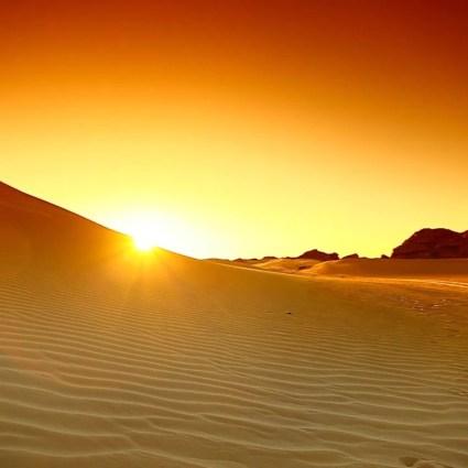 Sahara Wonderland