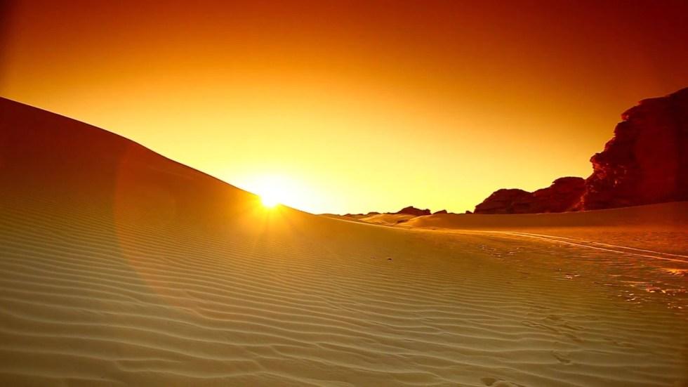 Sahara Wonderland 15963471