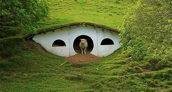 LOTR : maisons pour moutons