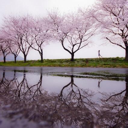 Photographies de Kouji Tomihisa