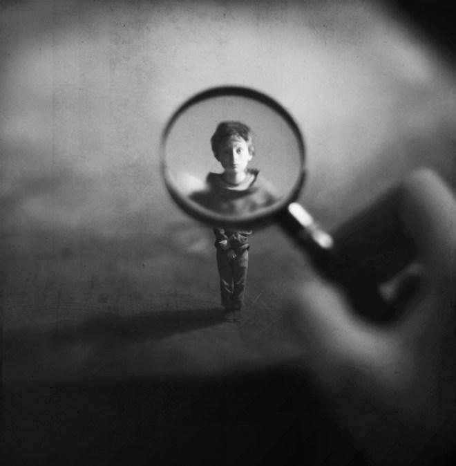 Inspecting - Fiddle Oak