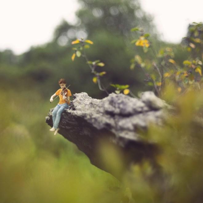 The Melody - Fiddle Oak