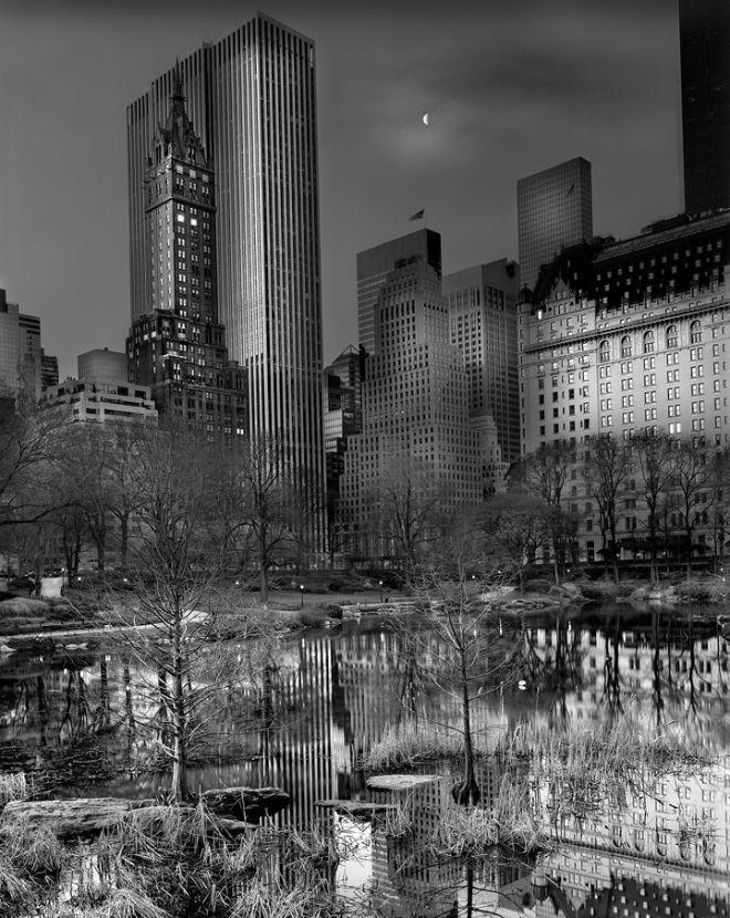Central Park / Michael Massaia