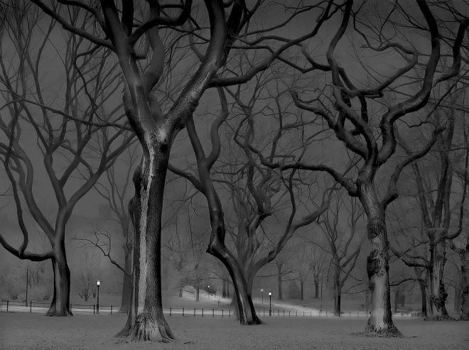 Sildgier Hill - Central Park / Michael Massaia