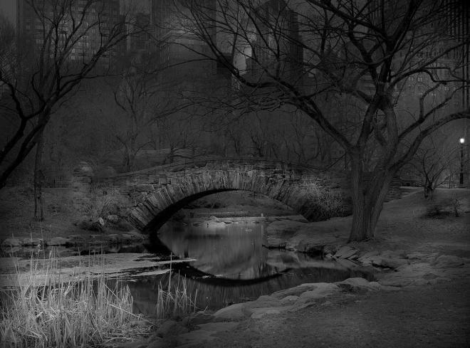 Deep In A Dream - Central Park / Michael Massaia