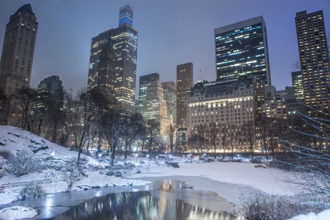 Winter In Central Park - Anthony Quintano 0008