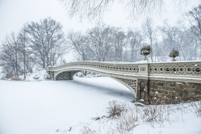 Bow Bridge - Grant Friedman 0002