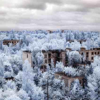 Tchernobyl, un paradis pour les stalkers / Vladimir Migutin