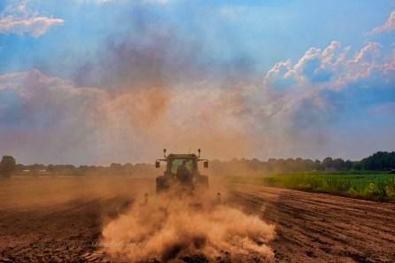 'stof', mijn inzending voor brabant in beeld. in juli teistert de droogte het land. aan de rotschotseweg in den dungen doet een loonwerker veel stof opwaaien...
