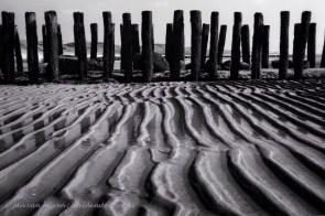 op het strand van zoutelande