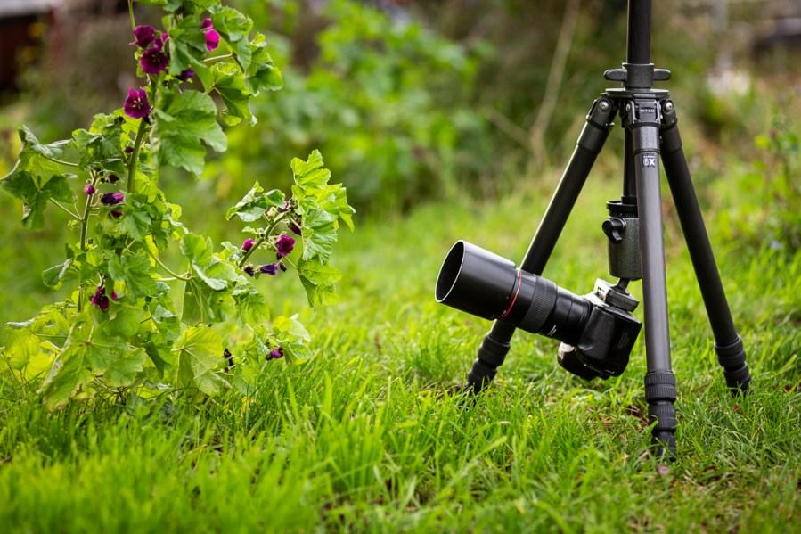 Met een omgedraaide middenzuil kun je met een staief laag vanaf de grond fotograferen
