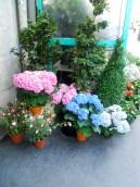 Floral Store in Paris