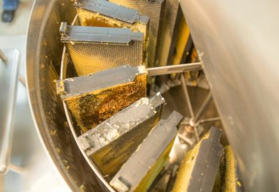 beeloved-honey-spinner