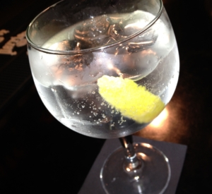 Tasty Gin and Tonic with Lemon Wedge