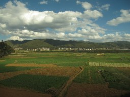 01 - Yunnan - Rice fields from the train