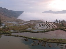 34 - Yuanyang - rice terraces