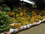 17 - Ninh Binh - bananas!
