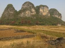 21 - Liugong