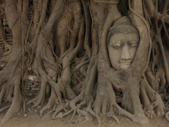 35 - Ayutthaya