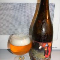 Review of De Proef Flemish Primitive Wild Ale (Surly Bird)