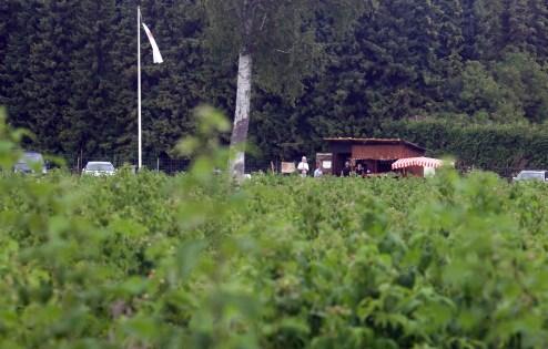 Unser neues Himbeerfeld an der Reschenbachstraße