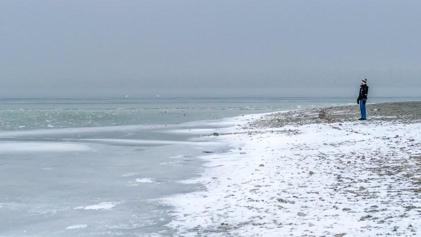 Ein Blick auf die endlos scheinende Eisfläche (Bild Insel Reichenau Januar 2017)
